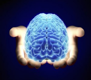 Pair of hands holding a blue brain